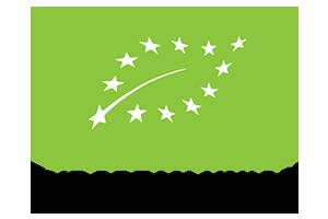 logo europe 300x200